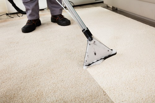 Top 3 Reasons To Employ Professional Carpet Cleaning Services